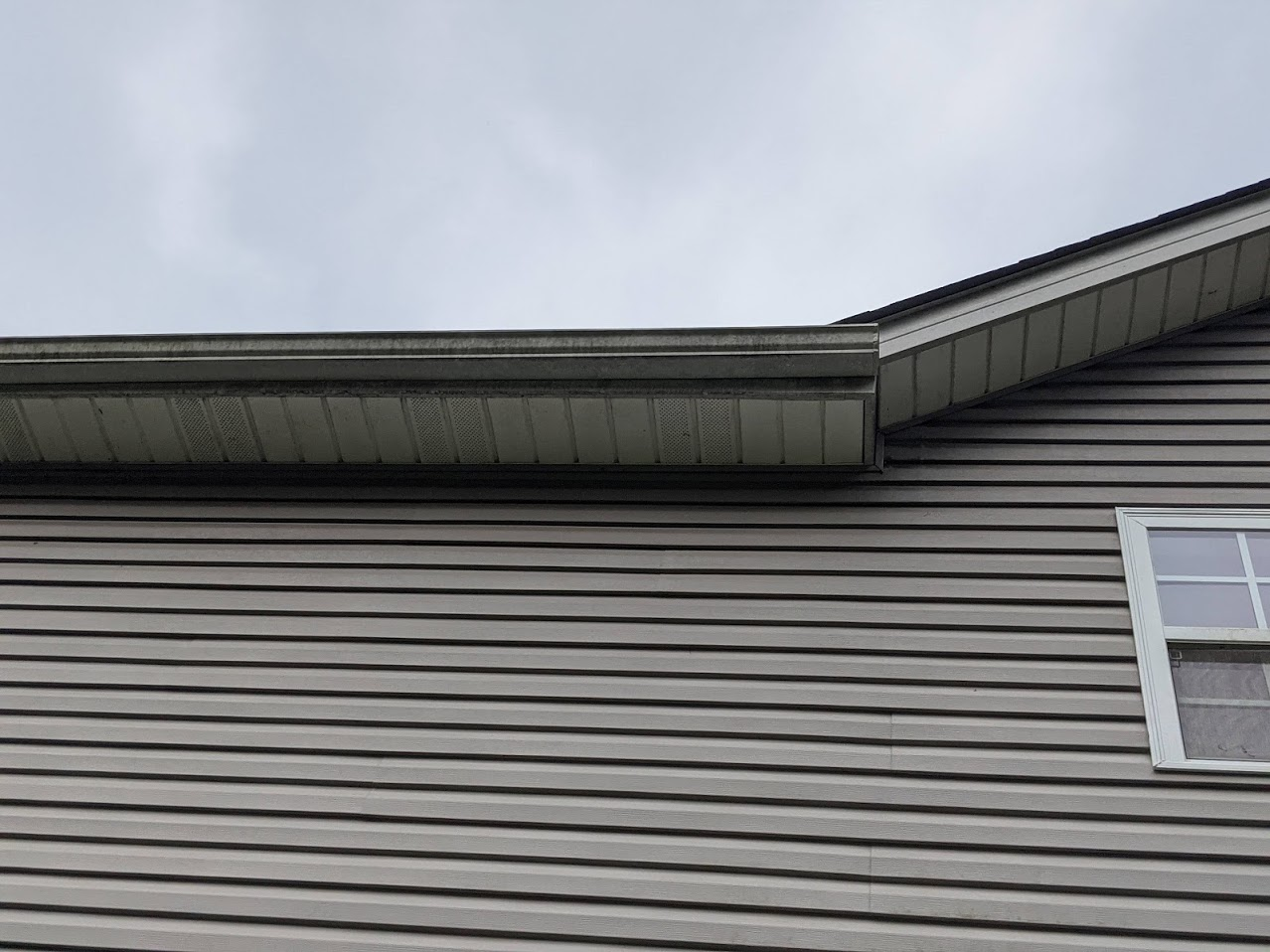 This white gutter and soffit was covered in Mold and Algae
