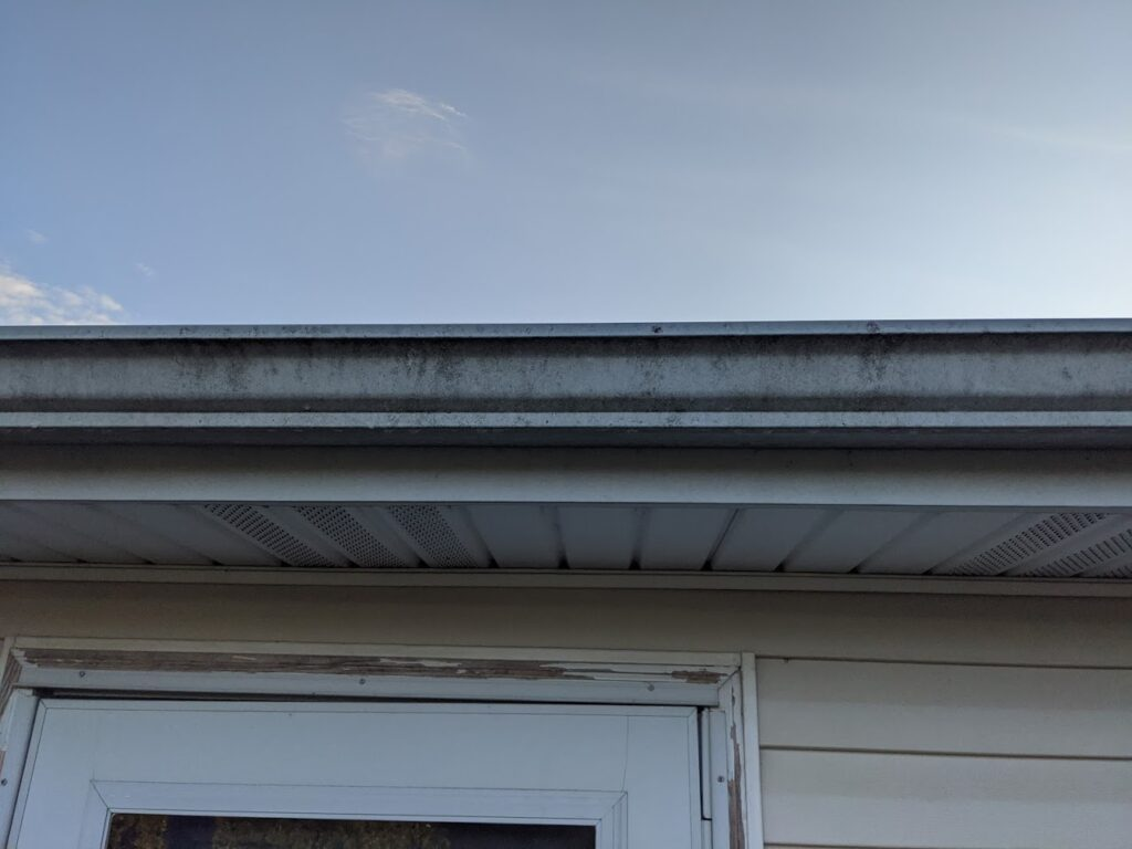 Gutters needed pressure washed