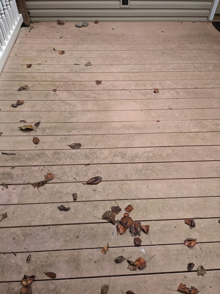 Slippery deck covered in algae and leaves