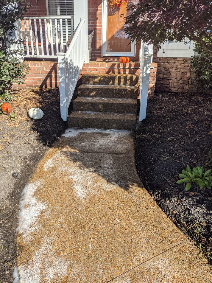 concrete steps pressure washed and free of algae