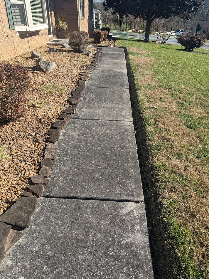 Front sidewalk covered in mold and algae that needs to be cleaned