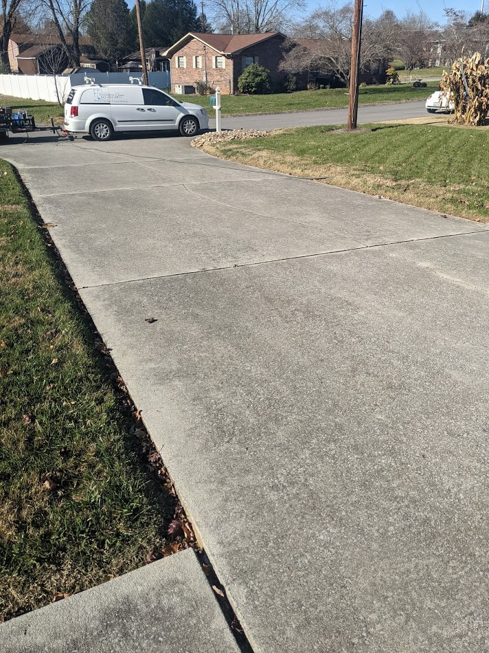 Driveway covered in dirt, mold, and algae