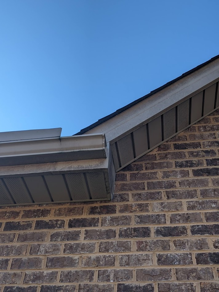 Algae and mold growing on the soffits