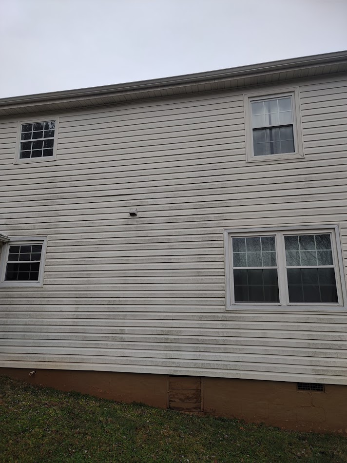 back side of house with vinyl siding looks green from algae
