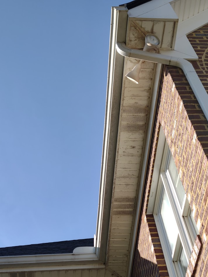 Mold and algae growing on soffits also have spider webs